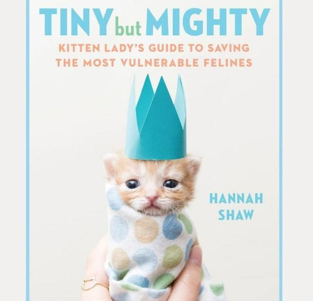 Tiny But Mighty Book