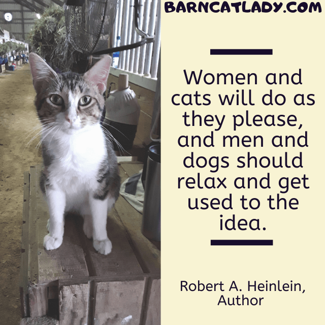Women and cats will do what they please quote graphic.