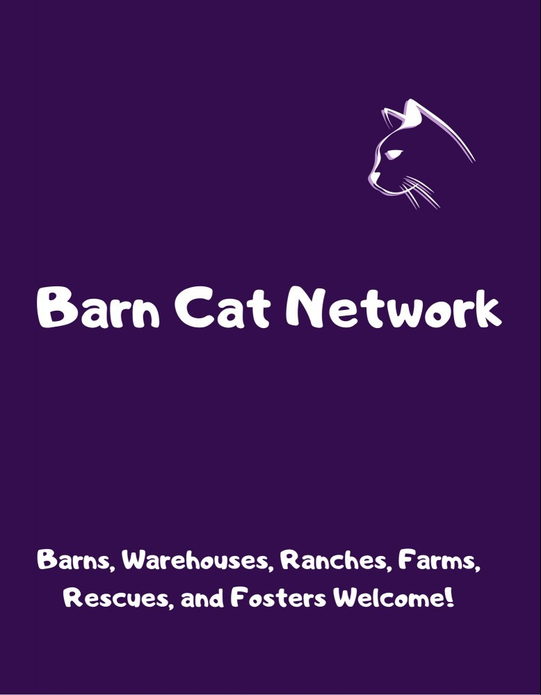 Barn Cat Network Graphic