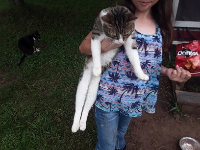 Tabby cat Stubby being held by a girl.