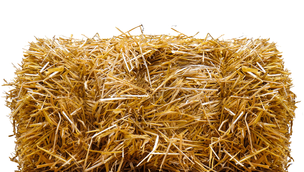 Straw bale for cat shelters.