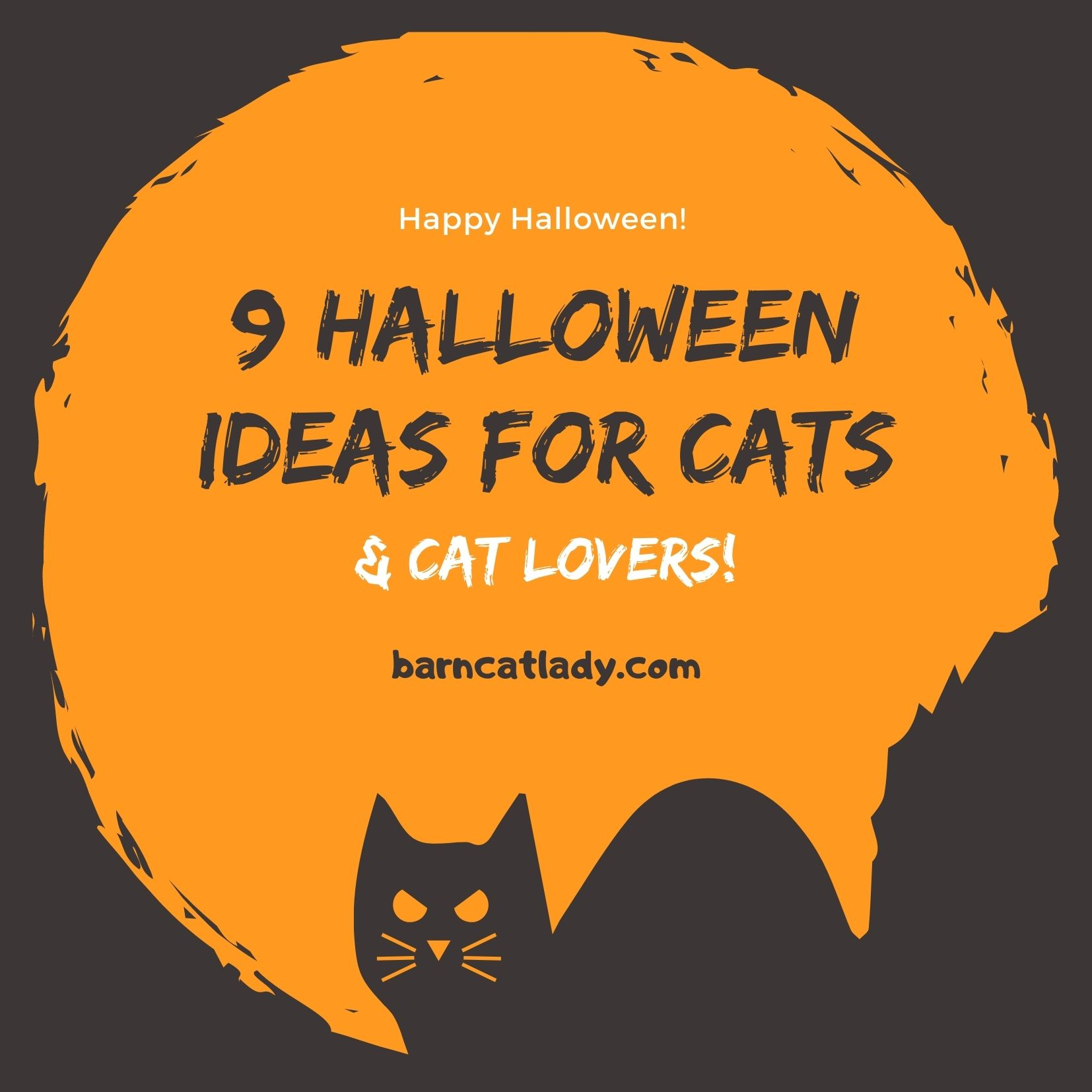 Halloween Ideas for Cats